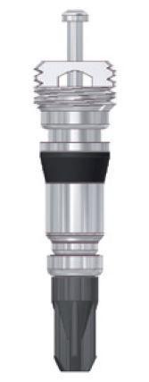 Spezial-Ventileinsatz LKW kurz (Auswuchtpulver)